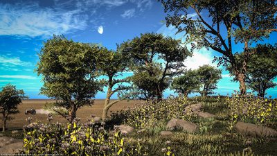Paesaggi 3D 2012 – Vue