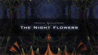 The nigth flowers